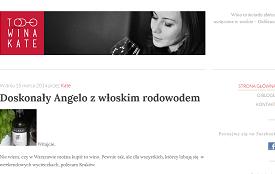 Blog Towinakate.pl