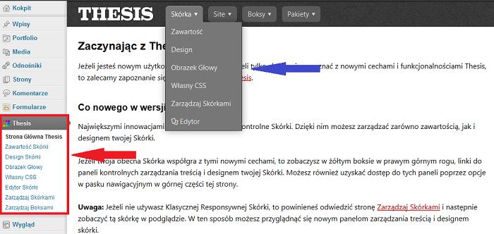 Opcje designu skórki Thesis