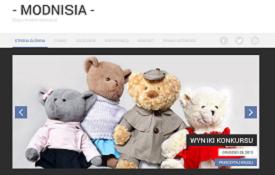 Blog Modnisia.com.pl